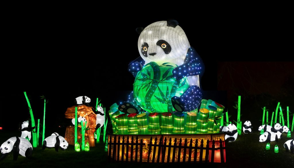 panda at chinese lantern festival koka booth